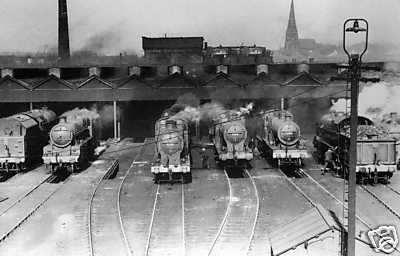 A shedload of locomotives