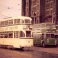 Tram and buses